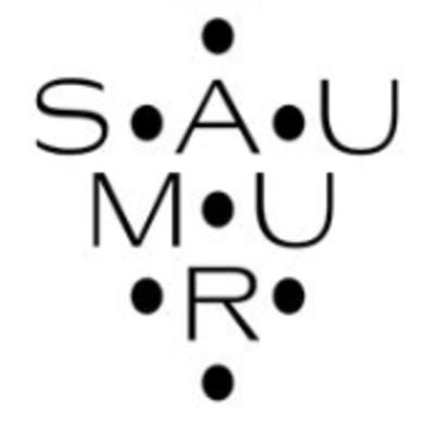 Les Vins de Saumur