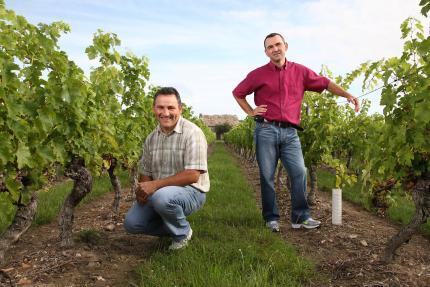 Vignoble de la Roseraie