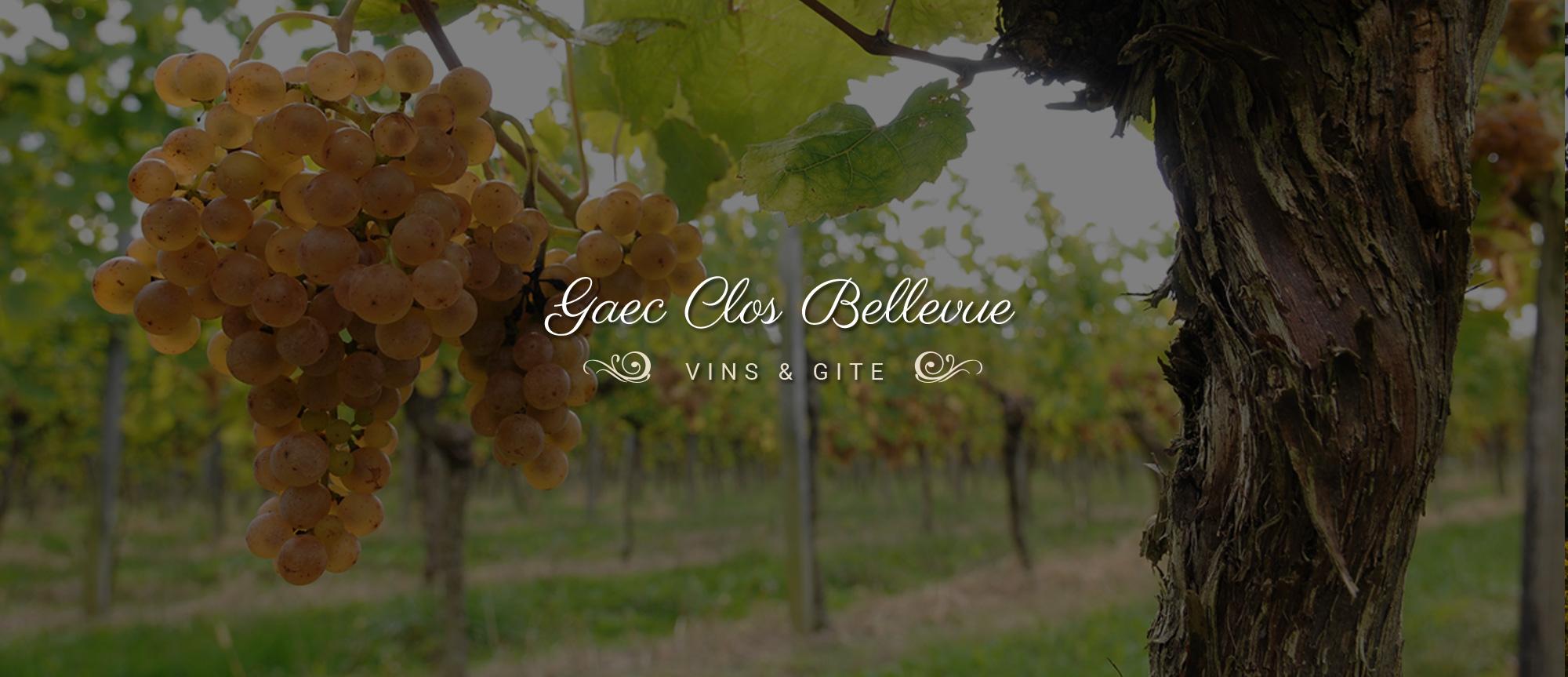 Clos Bellevue Jurancon