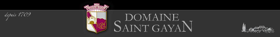 Domaine Saint Gayan