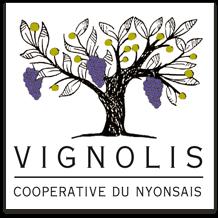 Vignolis