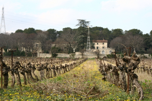 Domaine Maillefaud
