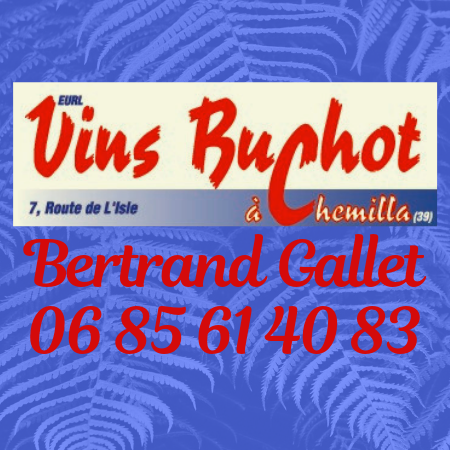 Vins Buchot